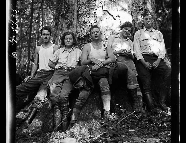 Five Hikers (1933)