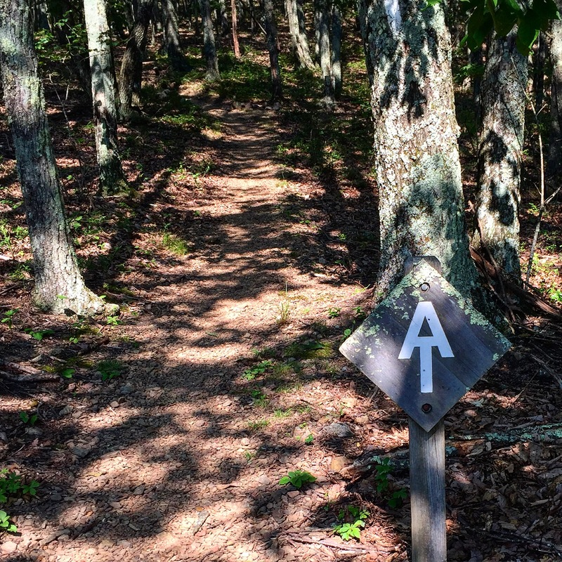 Trail Sign (2016)