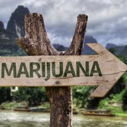 Marijuana Sign.jpg